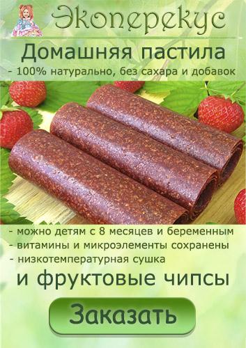 Экоперекус - домашняя пастила и фруктовые чипсы