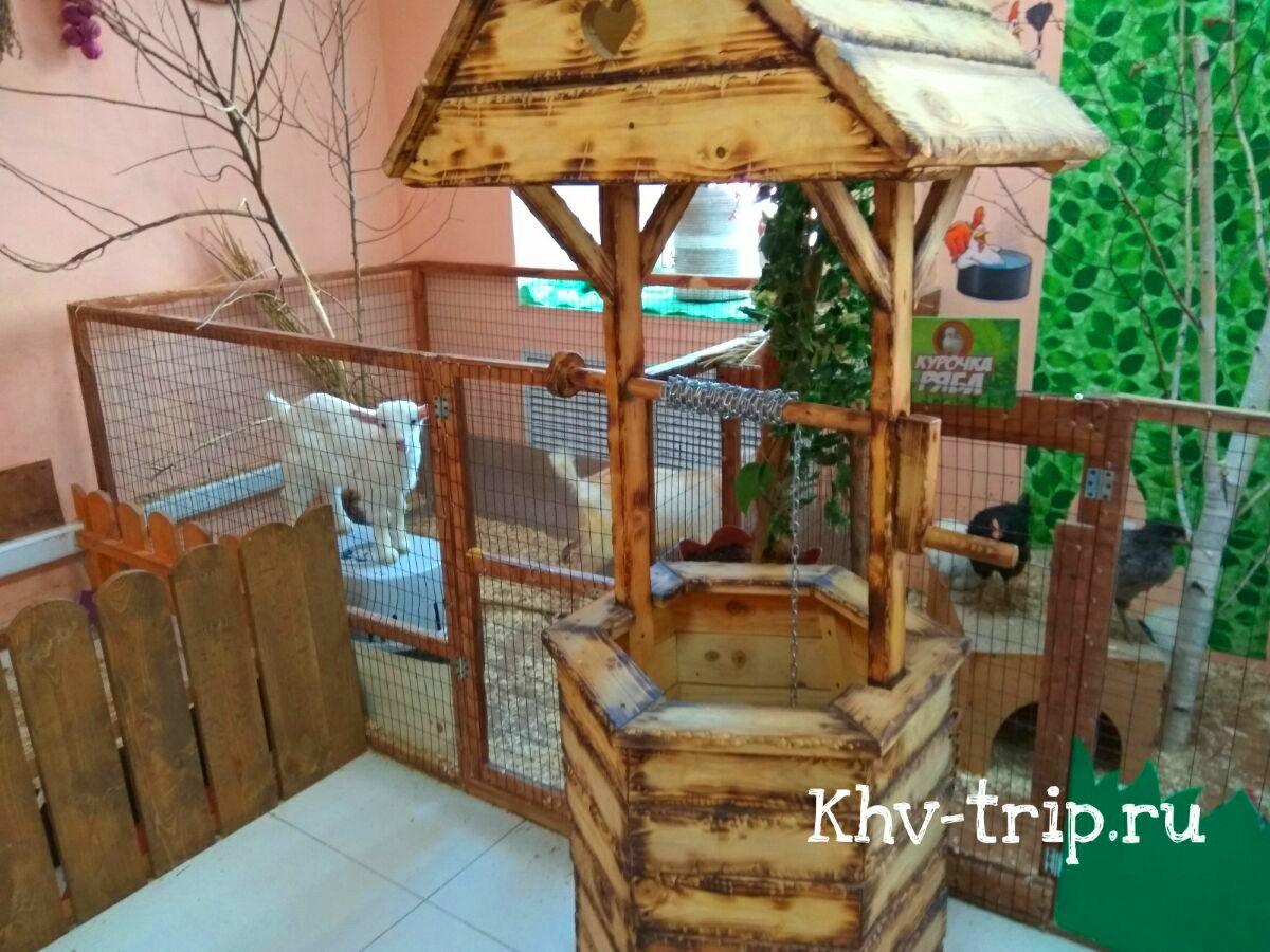 Контактный зоопарк Хабаровск